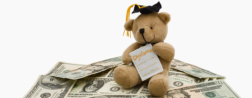 Teddy Bear Grad Diploma Money